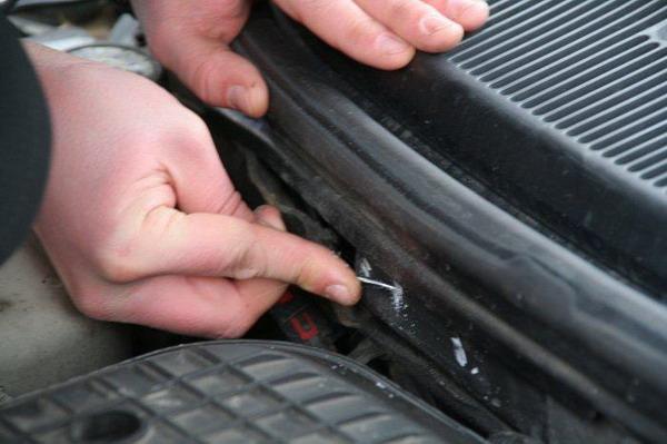 У Голій Пристані протягом останнього місяця зареєстровано 4 випадки перереєстрації автомобілів із перебитими номерами
